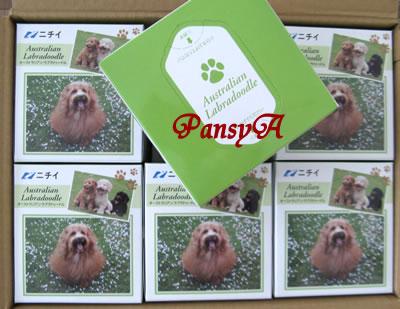 (株)ニチイ学館〔9792〕より「株主優待・選べるプレゼント」で選択した「希少犬種 オーストラリアン・ラブラドゥードル オリジナルティッシュセット(12箱入り)」が届きました。-1