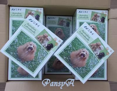 (株)ニチイ学館〔9792〕より「株主優待・選べるプレゼント」で選択した「希少犬種 オーストラリアン・ラブラドゥードル オリジナルティッシュセット(12箱入り)」が届きました。