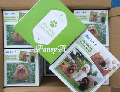 (株)ニチイ学館〔9792〕より、【最後の株主優待】「株主優待・選べるプレゼント」で選択した「希少犬種 オーストラリアン・ラブラドゥードル オリジナルティッシュセット(12箱入り)」が届きました。