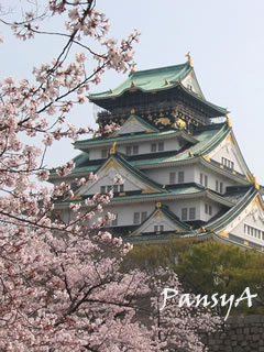関西の花と観光名所へ