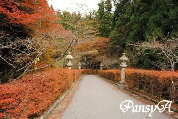 秋の比叡山延暦寺の風景(2)