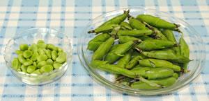 そら豆とキュウリと魚肉ソーセージのサラダ☆大葉添えの作り方